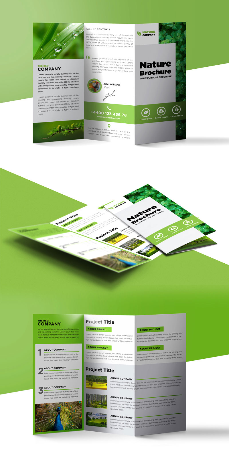 Nature tri fold brochure template free psd for Brochure folding templates