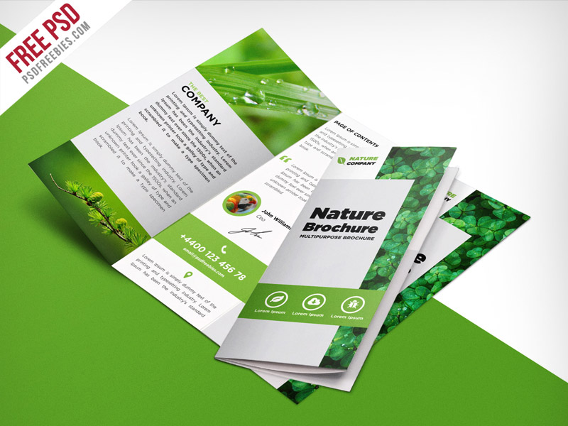 Nature tri fold brochure template free psd for Templates for tri fold brochures