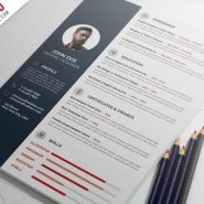 Professional Resume CV Template PSD