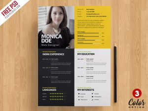 Creative Resume Template PSD Bundle