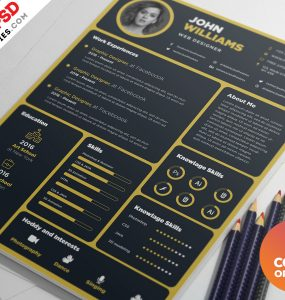 Designer Resume Template PSD Bundle