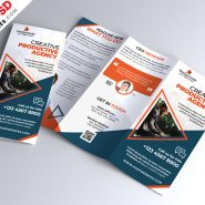 Multipurpose Tri-fold Brochure Design PSD